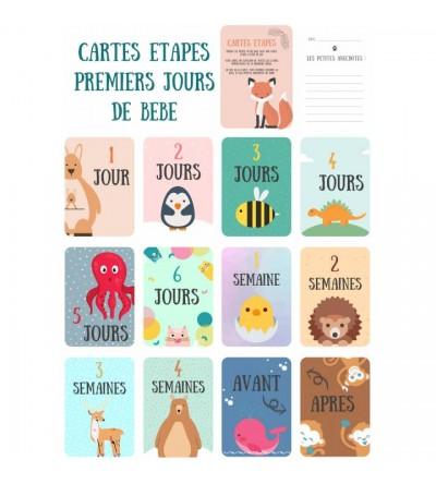 """Lot de 12 Cartes étapes Bébé """"Mes premiers jours"""""""