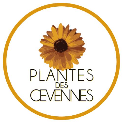 Plantes des Cévennes